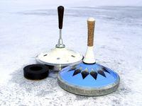12. Elmshorner Meisterschaften im Eisstockschießen